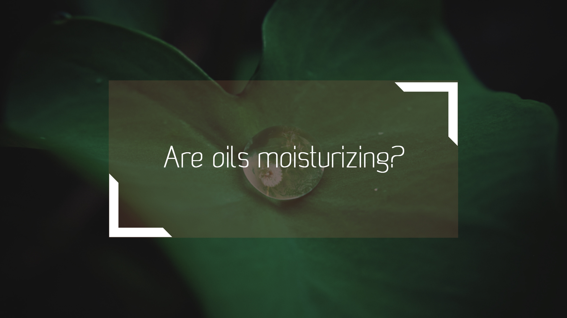 Are oils moisturizing?