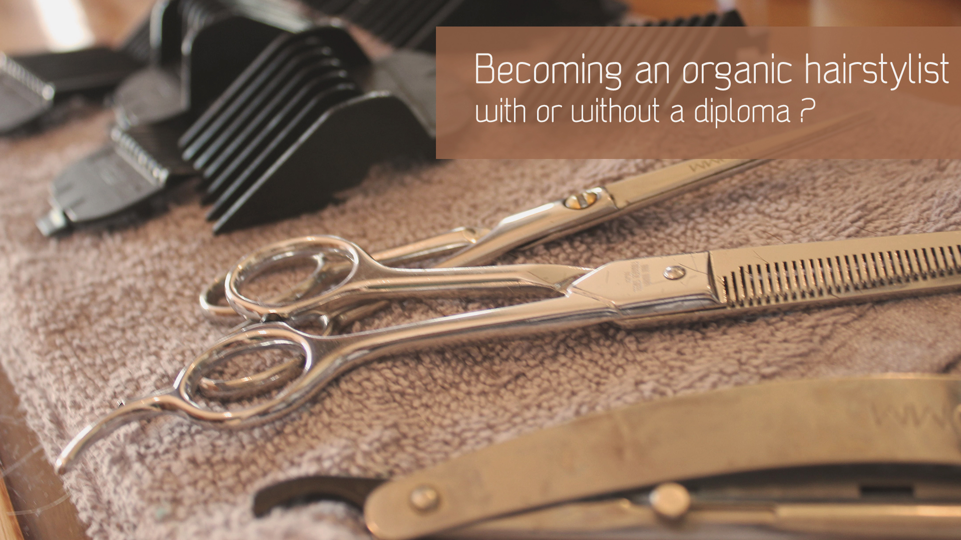 Do you need a diploma to be an organic hairstylist?