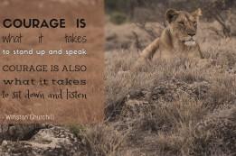 Winston Churchill - Courage