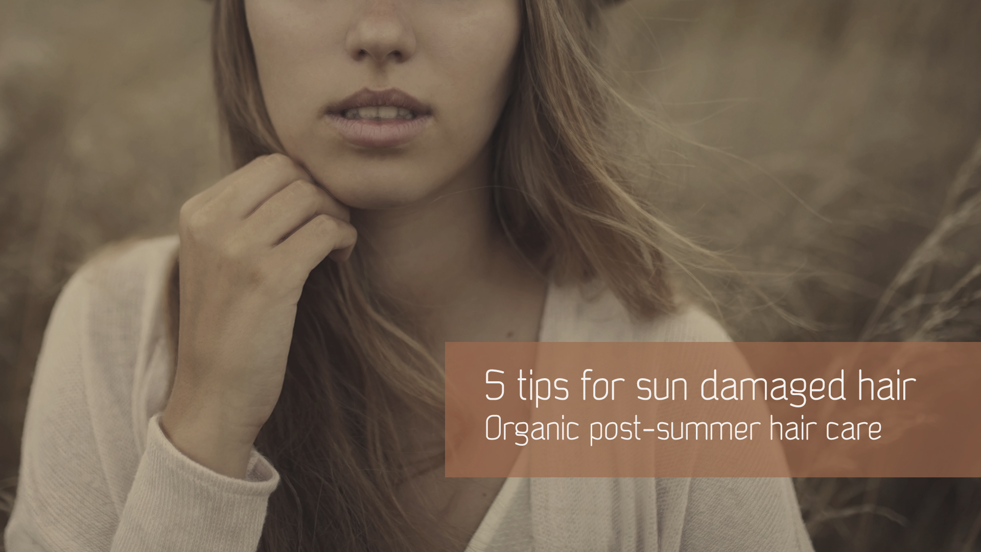 Best natural tips & products for sun damaged hair