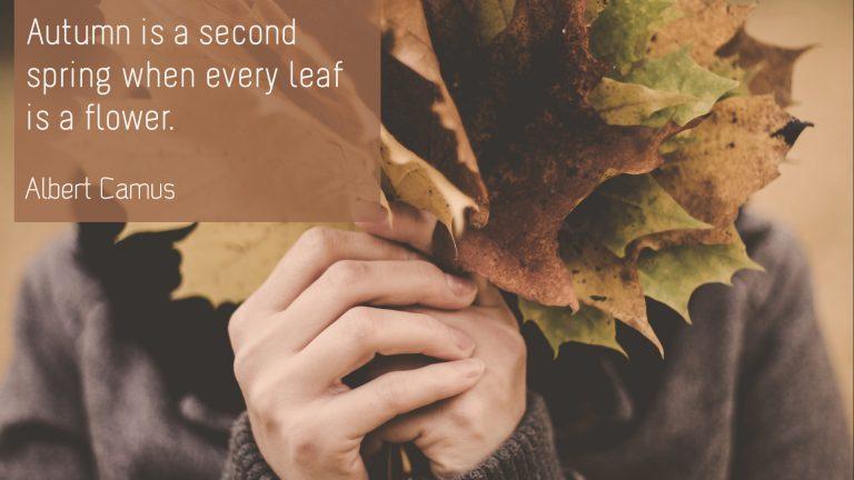 Albert Camus - Autumn
